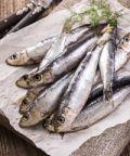 Sagra del pesce a Cremolino