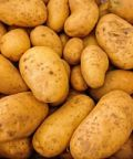Sagra della patata