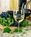 Sorgentedelvino live, centinaia di vini naturali da gustare