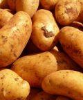Sagra della patata a Prazzo