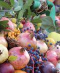 Festa dei frutti dimenticati e del marrone di Casola Valsenio