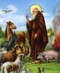 Festa di S. Antonio Abate a Cerveteri