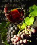 Sagra del Vino ad Atzara