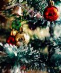 Natale 2018 a Como: accesione dell'albero