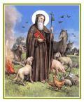Sagra di Sant'Antonio Abate