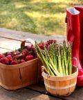 Festa dell'Asparago e della Fragola a Gardigiano