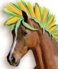 Fiera del mais e dei cavalli