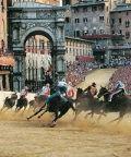 Palio di Siena: la più famosa competizione fra contrade
