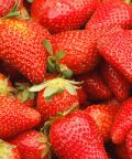 Sagra delle fragole a Volpedo