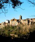Pellegrinaggio di San Vivenzio