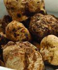 Volterra Gusto e Mostra mercato tartufo bianco e dei prodotti tipici locali