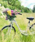 Tutti in bici: pedalando in famiglia