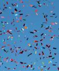 Carnevale di Castelnovo di Sotto 2017