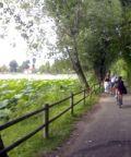 Roundabike 2018, bici & dintorni nel parco del Mincio