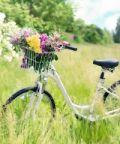 Biciclettata di primavera 2018