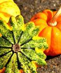 festa d'autunno e della zucca
