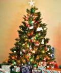 Natale a Racconigi