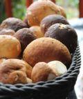 Sagra di San Girolamo e Festa dei Funghi