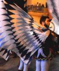Festa medioevale a San Giorgio Morgeto