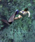 Bio snorkelling