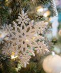Vivi la magia del Natale con la Murgia Incantata