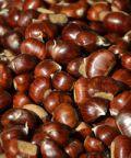 Festa del Marrone e dei prodotti tipici