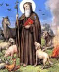 Festa di S. Antonio Abate