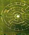 Riapre il labirinto effimero di Alfonsine, opera unica al mondo