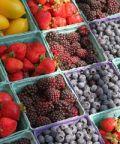 Mercato del contadino con i colori e sapori di Ferrara