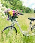 Biciclette in fiore ad Arona