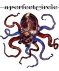 A Perfect Circle: torna in Italia la band guidata da James Maynard Keenan