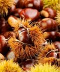 Castagnata e merenda sinoira d'autunno