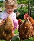 Per corti e cascine 2018, giornata di fattorie a porta aperte