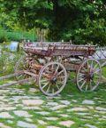 Sfilate di carrozze e balli dell'Ottocento