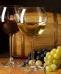 Via alla 75ma Sagra dell'uva e dei prodotti tipici locali