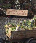 Antica Fiera di San Michele