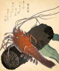 Washoku, la cucina giapponese: cibi e immaginario alimentare