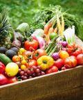 Il giardino dei semplici, il mercatino dei prodotti bio
